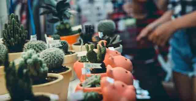 Rất nhiều sản phẩm và mẫu mã khác nhau tại hội chợ Đà Nẵng