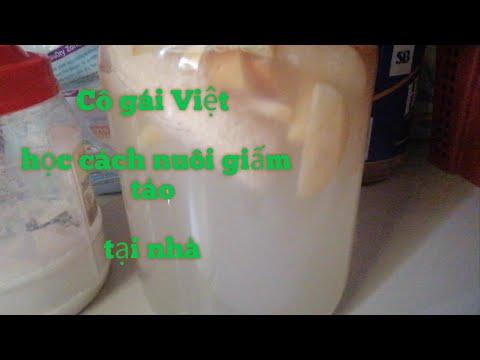 Cách làm giấm táo tại nhà /Cô gái Việt học cách nuôi giấm @ÚT THÁP MƯỜI